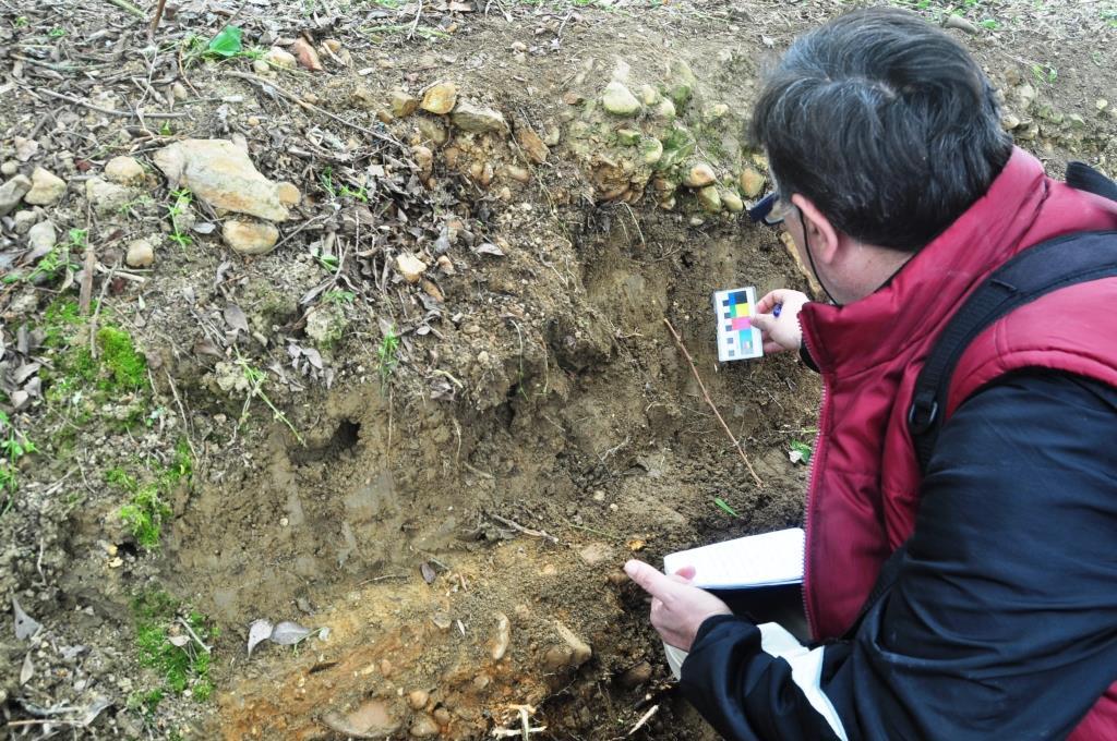 El arqueólogo estudia la estratigrafía de la calzada.