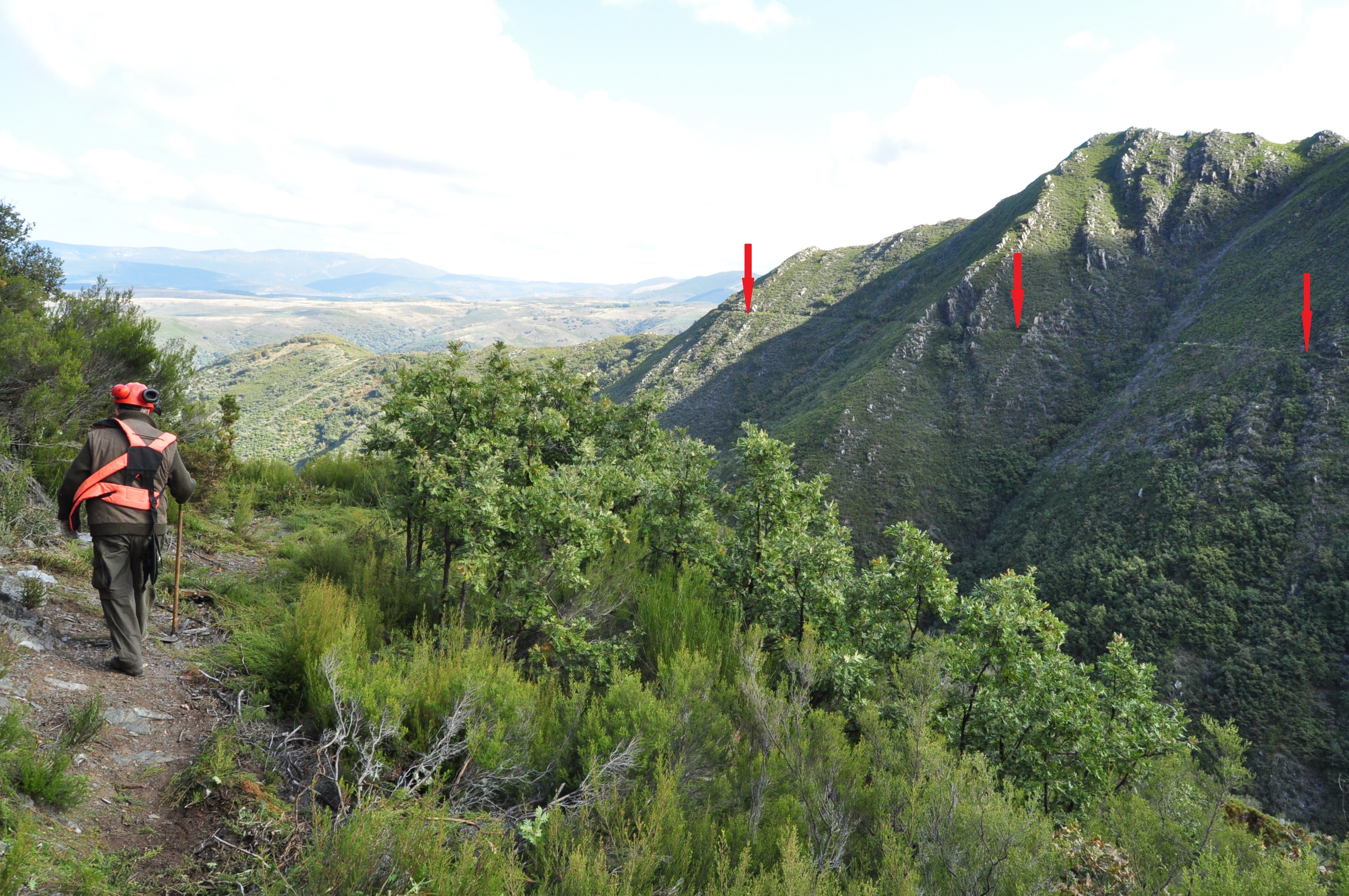 Canal por una y otra ladera del valle Río Guío.