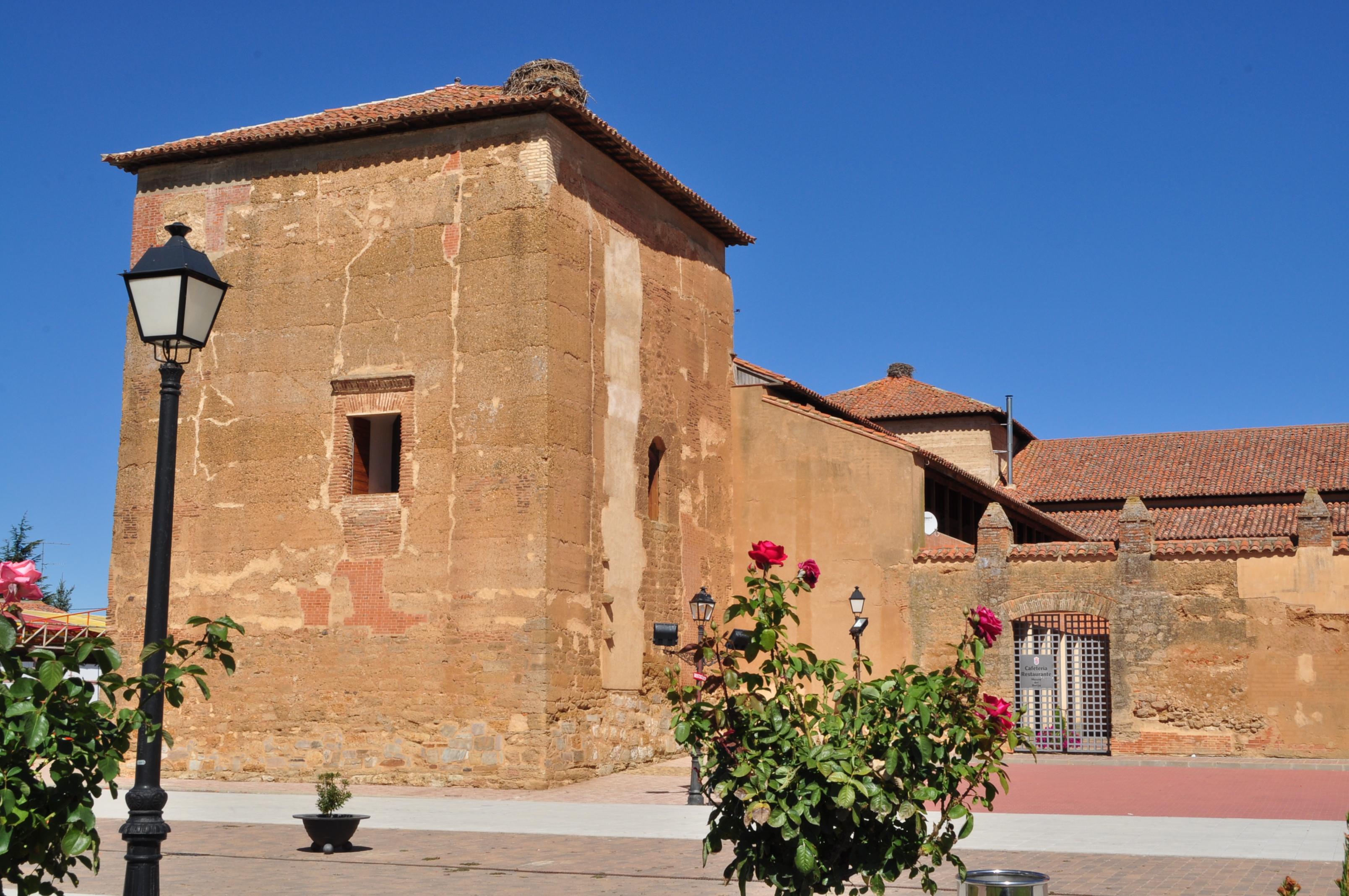 Castillo-Palacio de Toral de los Guzmanes (Foto David G. López)